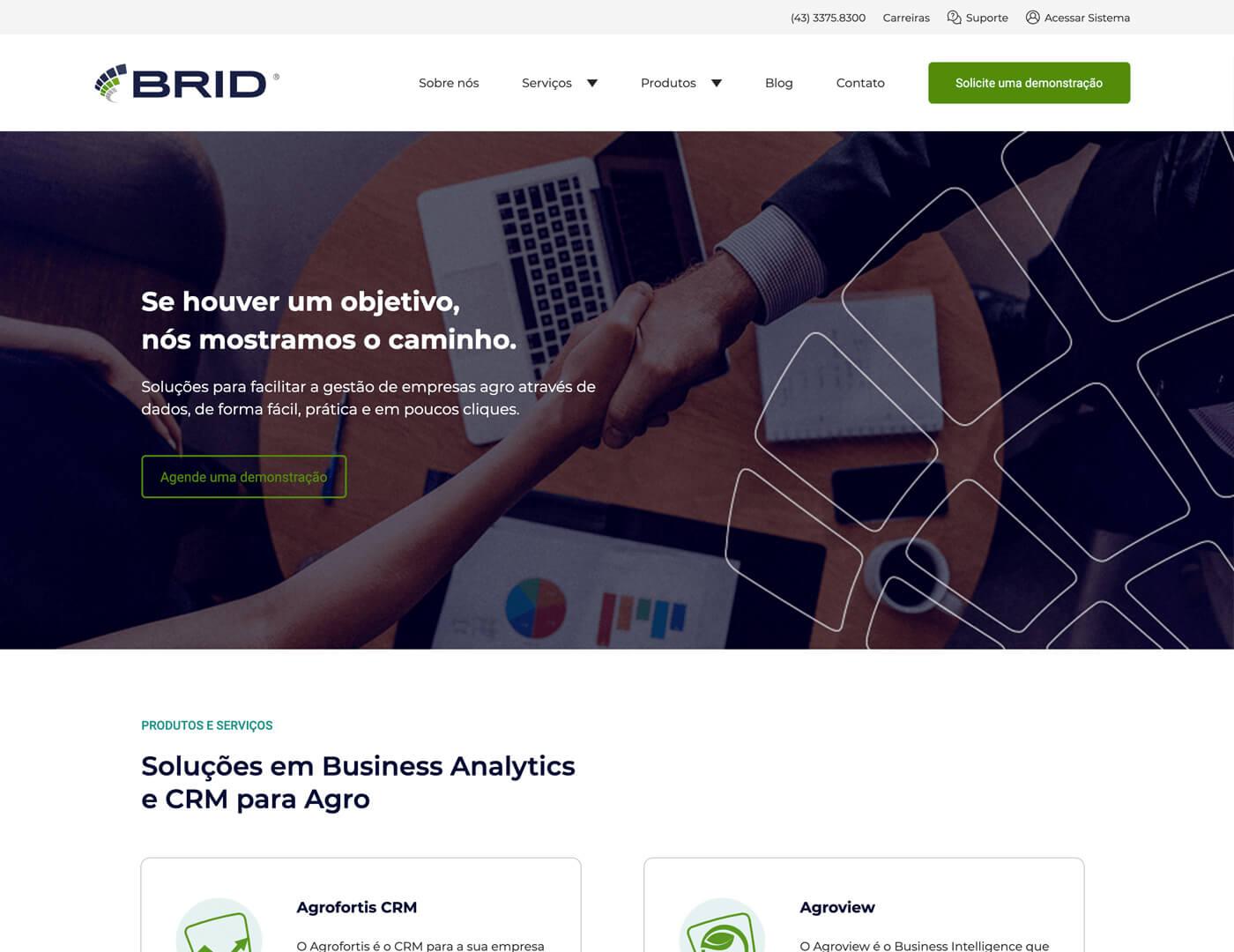Criação de site para empresa de software